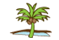 beach-palm-tree