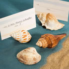 Beach Wedding Seashell Place Card Holders